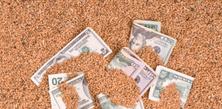 продаж зернових культур